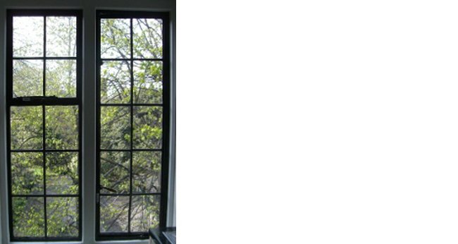 crittall-window