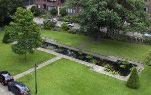 pond_garden